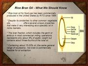 Rice Bran Oil - What We Should Know