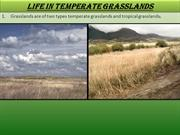 Life in temperate grasslands