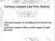 Commercial Litigation Lawyer Sydney
