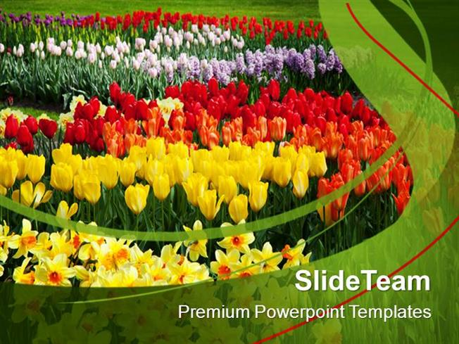 Blooming Spring Flowers Nature Powerpoint Templates Ppt