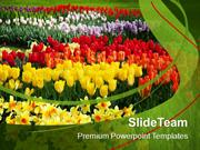 Blooming Spring Flowers Nature PowerPoint Templates PPT Themes And Gra