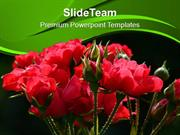 Red Roses Nature Abstract PowerPoint Templates PPT Themes And Graphics