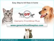 Step to kill fleas in home