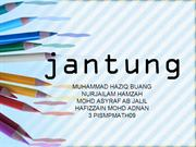 jantung fully edited