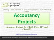 Accountancy Projects For CBSE