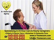 A-1 Home Care / A-1 Domestic Professional Services