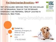 Pet Veterinarian Brooklyn, New York