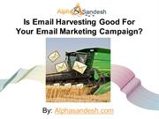 Is Email Harvesting Good For Your Email Marketing Campaign