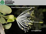Plant Conservation in Arid Lands
