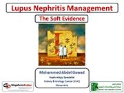 Lupus Nephritis Management