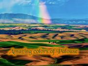 Amazing Colorful Landscapes