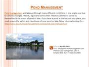 Pond & Lake Aerators