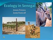 Ecology_in_Senegal[1]2