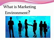 The Marketing Environment #02
