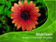 Flower With Dew Drops Nature PowerPoint Templates PPT Themes And Graph