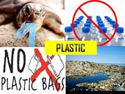 PLASTIC AND ITS EFFECTS