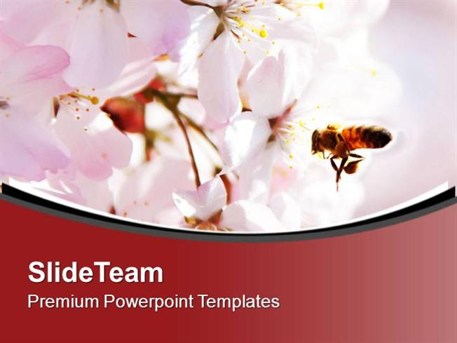 Honey bee powerpoint authorstream bright color honey bee and flower background powerpoint templates ppt toneelgroepblik Choice Image