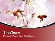 Bright Color Honey Bee And Flower Background PowerPoint Templates PPT