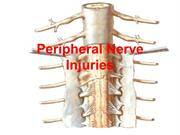 06 Peripheral Nerve Injuries