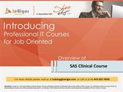 SAS Clinical Online Training and Placement Program