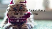 Funny Cat Pictures for Kids Funny Cat Pics Widescreen