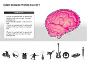 Human Brain Motivation Diagrams