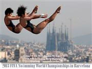2013 FINA Swimming World Championships in Barcelona