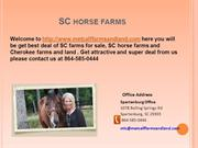 SC Horse Farms -by Metcalffarmsandland