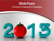 Celebrate This New Year 2013 PowerPoint Templates PPT Themes And Graph
