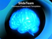 Brain Human Anatomy PowerPoint Templates PPT Themes And Graphics 0513