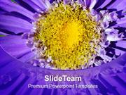 Bright And Colorful Macro Flowers PowerPoint Templates PPT Themes And