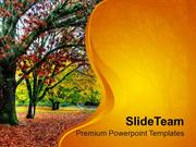Fall Of Leaves In Autumn PowerPoint Templates PPT Themes And Graphics