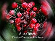 Red Christmas Berries PowerPoint Templates PPT Themes And Graphics 051