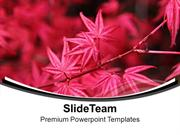 Autumn Theme With Pink Flowers PowerPoint Templates PPT Themes And Gra