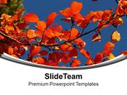 Autumn With Flowers Theme Background PowerPoint Templates PPT Themes A