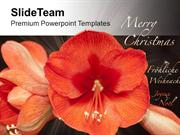Beautiful Flowers For Wishes Merry Christmas PowerPoint Templates PPT