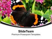 Black And Yellow Butterfly For Nature Theme PowerPoint Templates PPT T