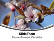 Flowers For Happiness Theme PowerPoint Templates PPT Themes And Graphi