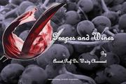 202410: Grapes and wine-01