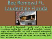 Bee Removal Ft. Lauderdale Florida