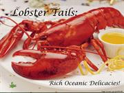 Lobster Tails- Rich Oceanic Delicacies