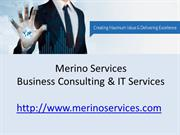 IT Services & Business Consulting Company- Merino Services