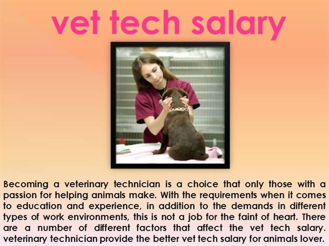 Vet Tech Quotes Alluring Veterinary Tech Salary Authorstream
