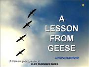 Ask the Geese