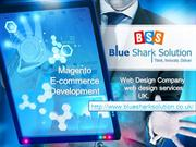 Web Design Company, web design services, Magento ecommerce Development