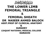 FEMORAL TRIANGLE FEMORAL HERNIA (FINAL)