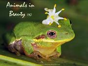 Animals in Beauty (part 16)