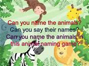 Can you name the animals?