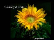 Wonderful_world---