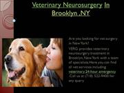 Veterinary Neurosurgery